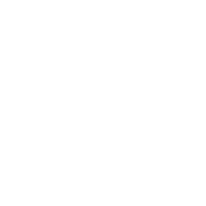 national-auctioneers-association-white